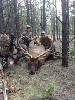 Trophy from New Mexico Elk Hunt